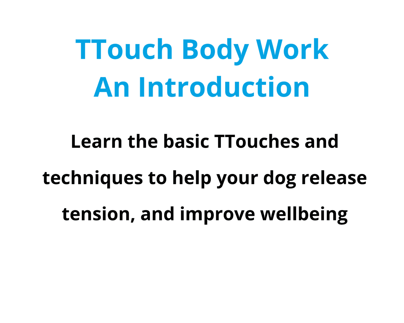 Online Course Introduction to TTouch Body Work